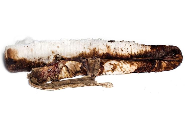 oil boom gulf spill
